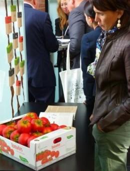 Tomaten met publiek - crop